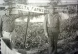 Delta_Farms_sign